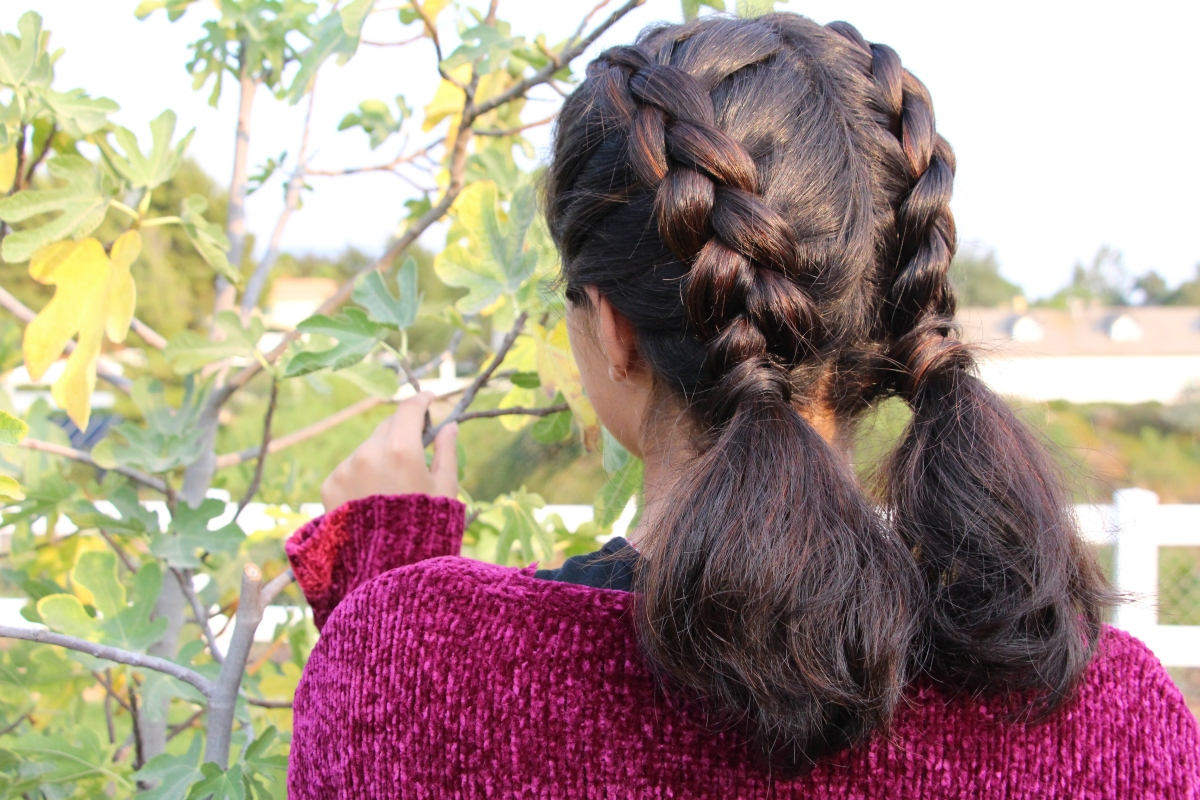 Double Dutch-Braided Ponytails {back to school & sport hairstyle!}